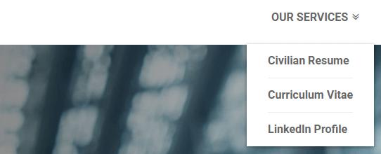 resumevalley-services-list